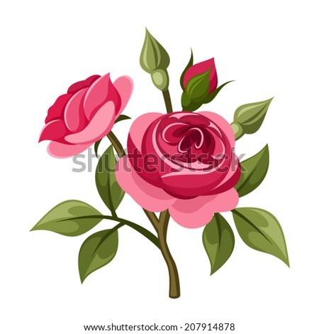 Branch of red roses isolated on white. Vector illustration. - stock vector
