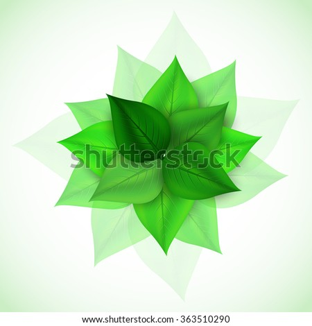 branch with fresh green leaves. Vector Illustration - stock vector