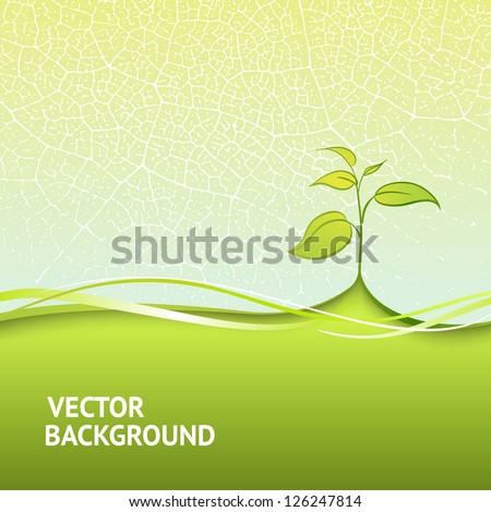 Branch with fresh green leaves. Vector illustration, eps 10, contains transparencies. - stock vector