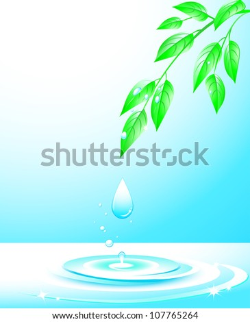 branch with sprigs and green leaves, falling water drop and splash - stock vector