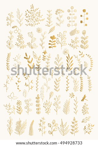 Branches and herbs with leaves. Gold herbs and leaves isolated on white background. Set of hand drawn vector decorative elements for your design. Ink illustration.