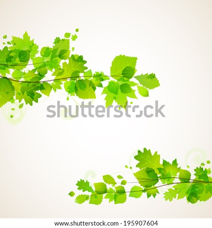 Branches with green leaves in the background