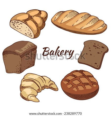 Bread, bakery products, color vector illustration, hand-drawn design elements.