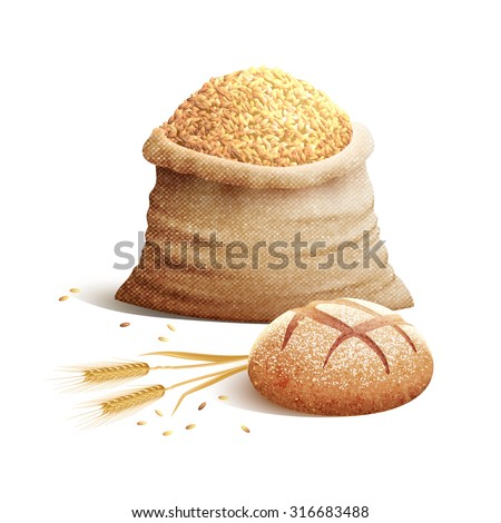 Bread wheat spikes and bag of grains or cereal with shadows 3d color concept vector illustration  - stock vector