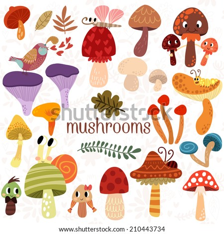 Bright different types of mushrooms  set in vector. Tasty card in cartoon style on white background - stock vector