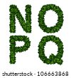 Bright natural alphabet from green leaves. Set. Letters n, o, p, q - stock photo