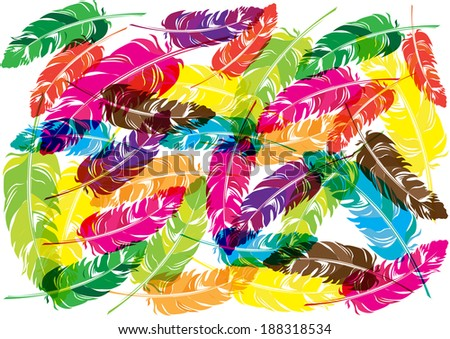 bright transparent feathers background