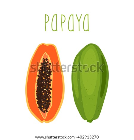 Bright tropical fruit - papaya, whole or half of a sectional with seeds on a white background. Vector illustration.