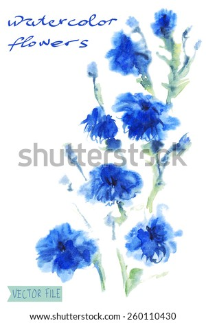 """Bright vector bouquet from water color flowers. An album """"vector bouquets by holidays from the picturesque drawn flowers.""""""""Blue flowers watercolor"""". - stock vector"""