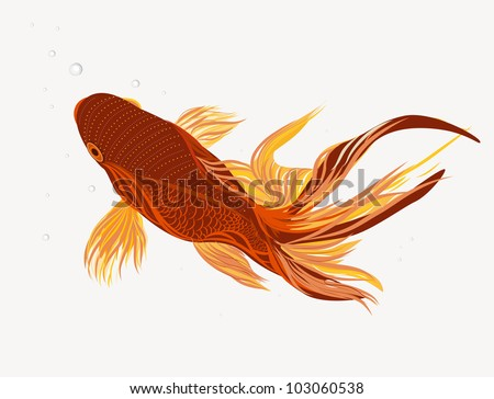 Bright vector illustration with koi fish stock vector for Koi fish vector