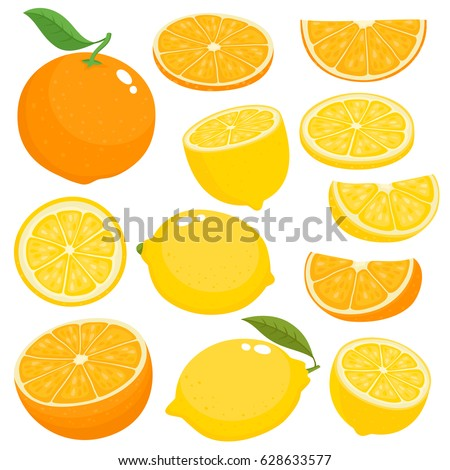 Bright vector set of colorful half, slice and segment of juicy orange and lemon. Fresh cartoon citrus fruits on white background.