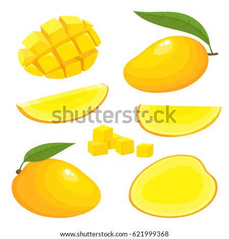 Bright vector set of colorful half, slice and whole of mango. Fresh cartoon exotic fruits isolated on white background.