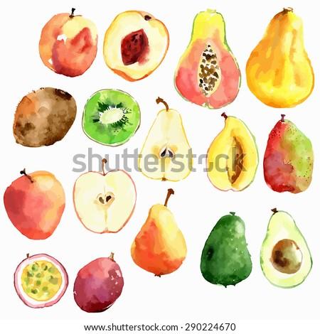 Bright vector watercolor fruits: apple, pear, peach, avocado, passion fruit, papaya, mango, kiwi