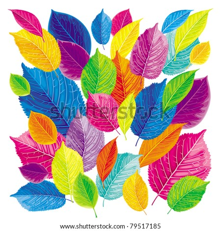 Brightly colored summer and autumn leaves background - stock vector