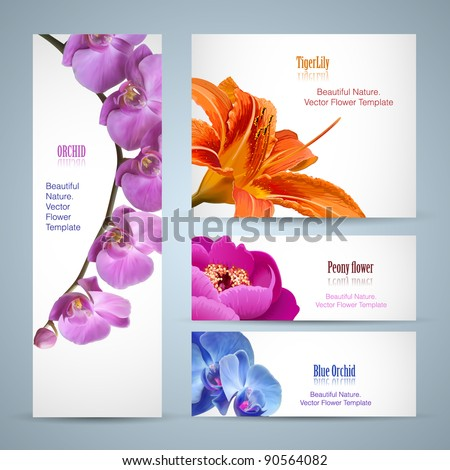 Brochure design, orchid flower vector template - stock vector