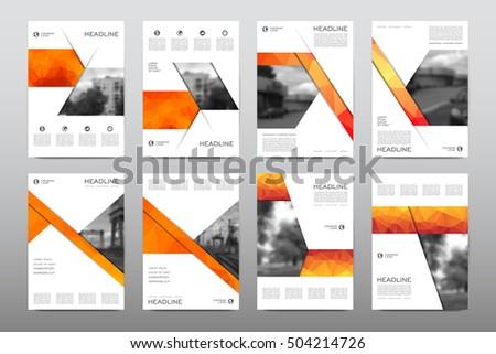 brochure layout template flyer design vector stock vector royalty