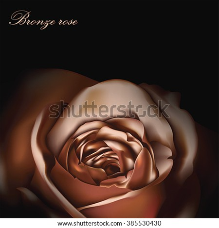 Bronze rose greeting card, vector - stock vector