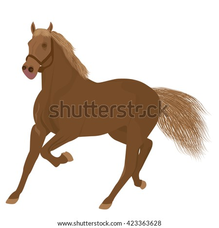 brown horse vector design