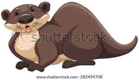 Nutria Stock Images Royalty Free Images Amp Vectors
