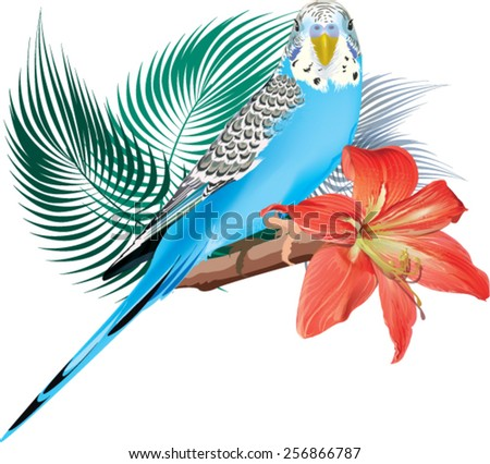 budgie sitting on a branch. a bouquet of flowers