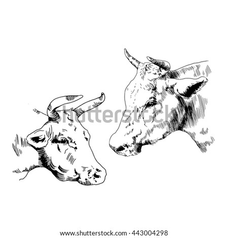 Springer Forks further Normally Open Kill Switches Pamco further Biker 20tattoos as well Ai To Makoto deviantart additionally Stock Vector Tattoo Design Vector Illustration. on scary bike ride