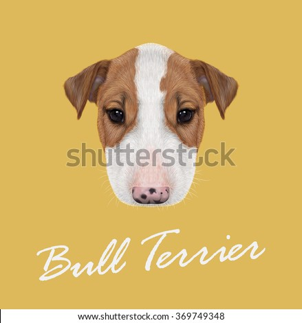 Bull Terrier Dog Portrait. Vector illustrated Portrait of  Bull Terrier Puppy on yellow background. - stock vector