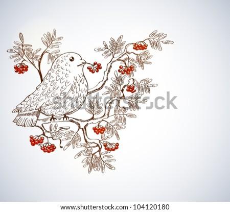 bullfinch and mountain ash background, beautiful vector illustration - stock vector