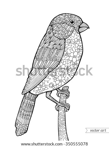 Bullfinch bird, vintage floral pattern. Vector. Coloring book page for adult. Zentangle. Hand drawn artwork. Holiday concept for Merry Christmas card, ticket, branding, logo, label. Black and white - stock vector