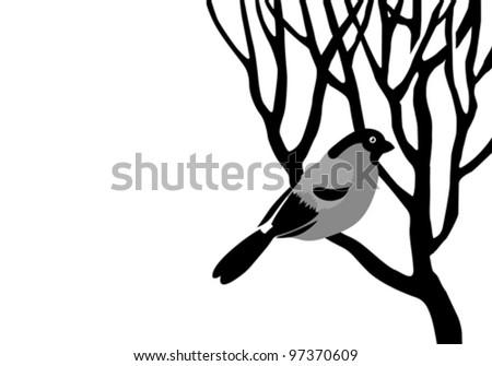 bullfinch silhouette on wood branch, vector illustration - stock vector