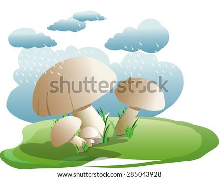 Bunch of edible mushroom - stock vector