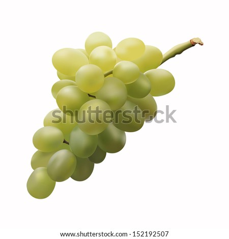 bunch of fresh green grapes on a white background