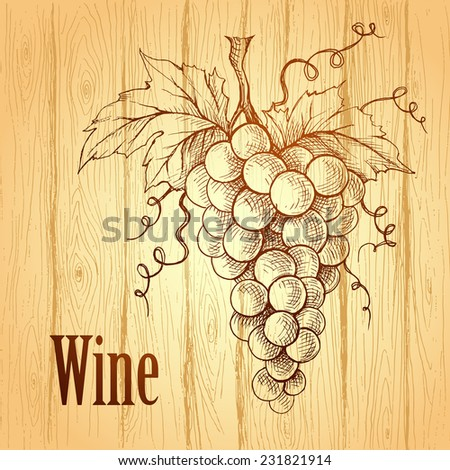 Bunch of grapes on wood background. Wine label.  - stock vector
