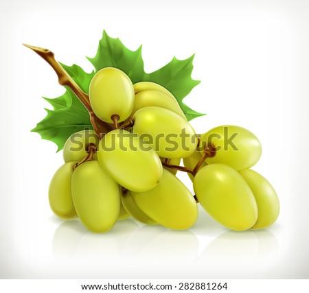 Bunch of grapes, vector icon - stock vector