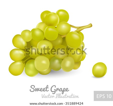 Bunch of grapes, vector icon - stock vector