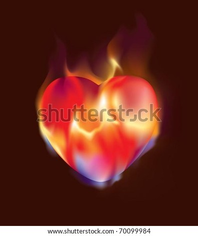 Burning heart. The vector illustration of heart burning in flames.