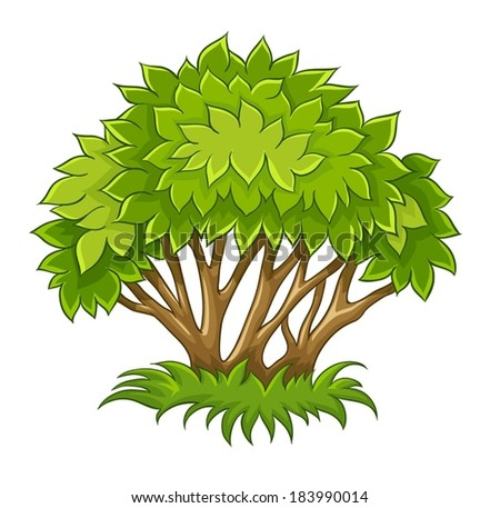 Bush with green leaf. Eps10 vector illustration. Isolated on white background - stock vector