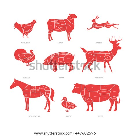 Butcher Shop Concept Vector Illustration Meat Stock Vector