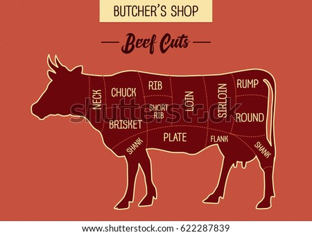 Butcher Shops Beef Cut Illustration Chart Stock Vector 622287839