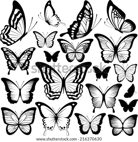 butterflies black silhouettes isolated on white background - stock vector