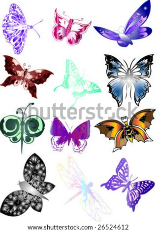 butterflies collection - stock vector