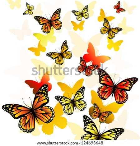 butterfly background, vector illustration