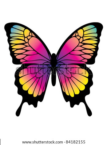 Butterfly in Color - stock vector