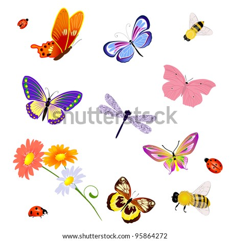 butterfly insects bee ladybug - stock vector