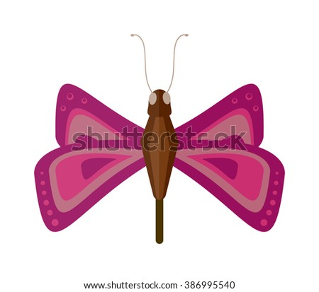 Butterfly isolated vector. Butterfly isolated on white background. Butterfly vector illustration. Colorful butterfly isolated on white background. - stock vector