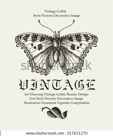 Butterfly, moth isolated. Insect realistic. Fauna nature. Greeting card. Poster. Engraving, drawing. Freehand drawing.  Vintage vector stock Victorian style illustration.