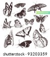 Butterfly set: entomological collection of highly detailed hand drawn butterflies. - stock vector
