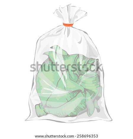 Cabbage. Hand drawing design elements. Plastic packaging for vegetables. Transparent bag for new design. Packaging for vegetarian food. Colorful image