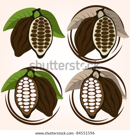 Cacao bean set - stock vector