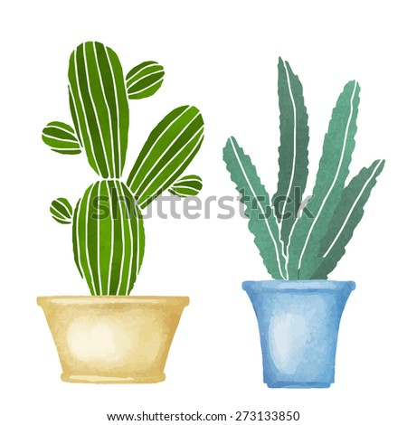 cacti watercolor set succulents home flowers houseplants in flowerpots blossoms isolated on - White Flowering House Plants
