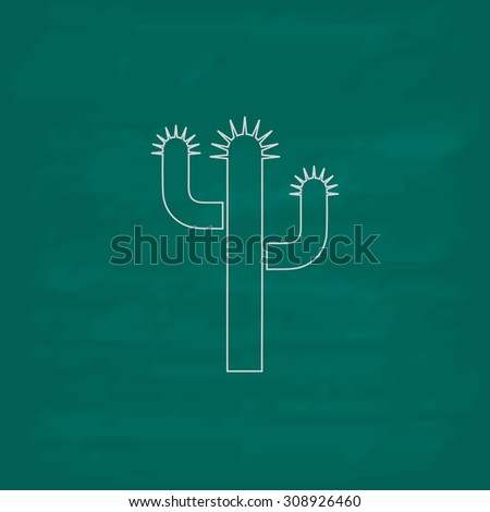 Cactus. Outline vector icon. Imitation draw with white chalk on green chalkboard. Flat Pictogram and School board background. Illustration symbol - stock vector